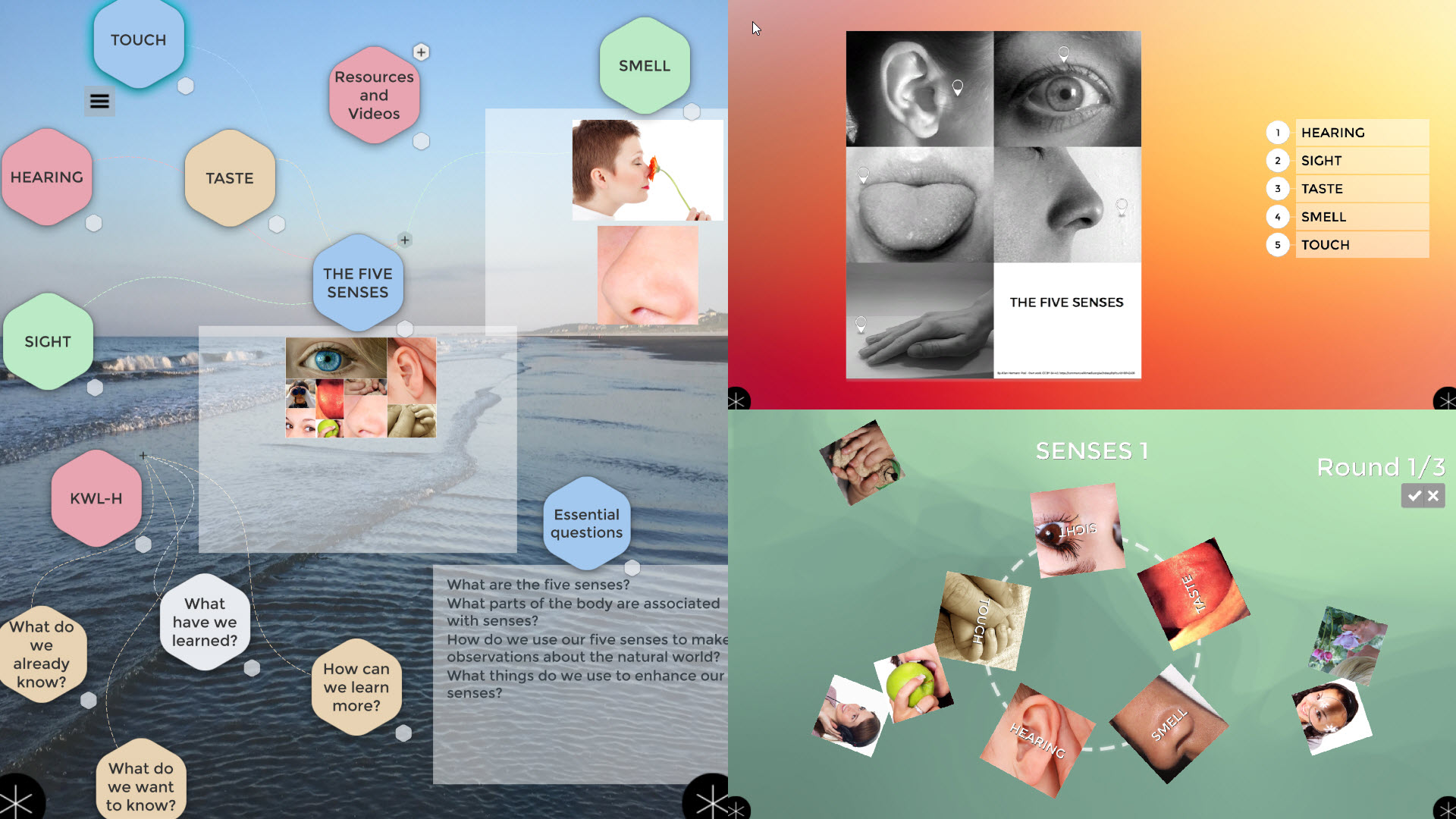 five senses lesson in Zones