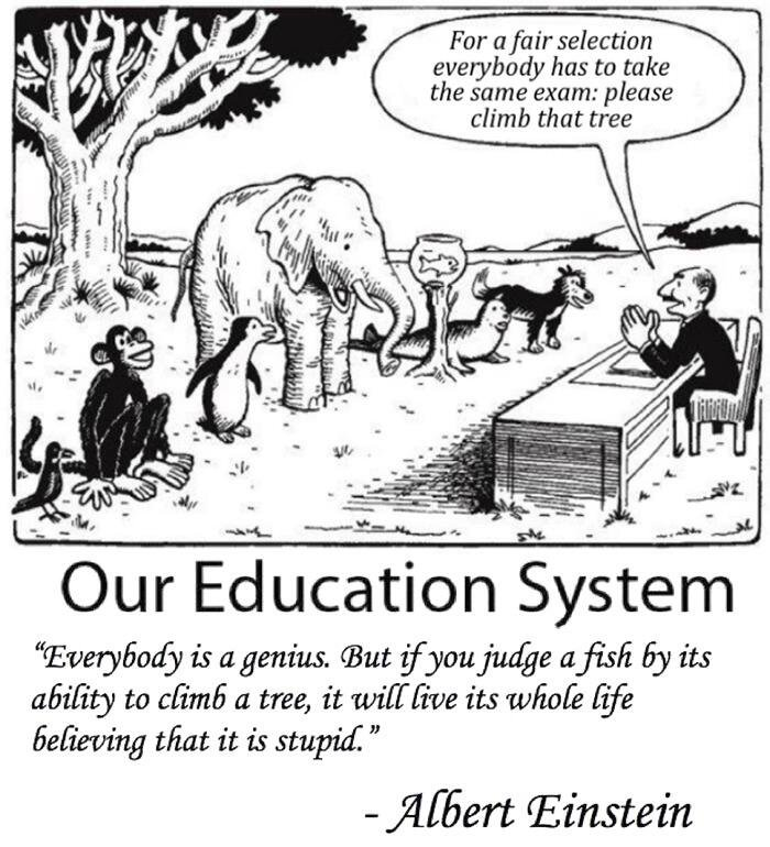 Our education system - comic