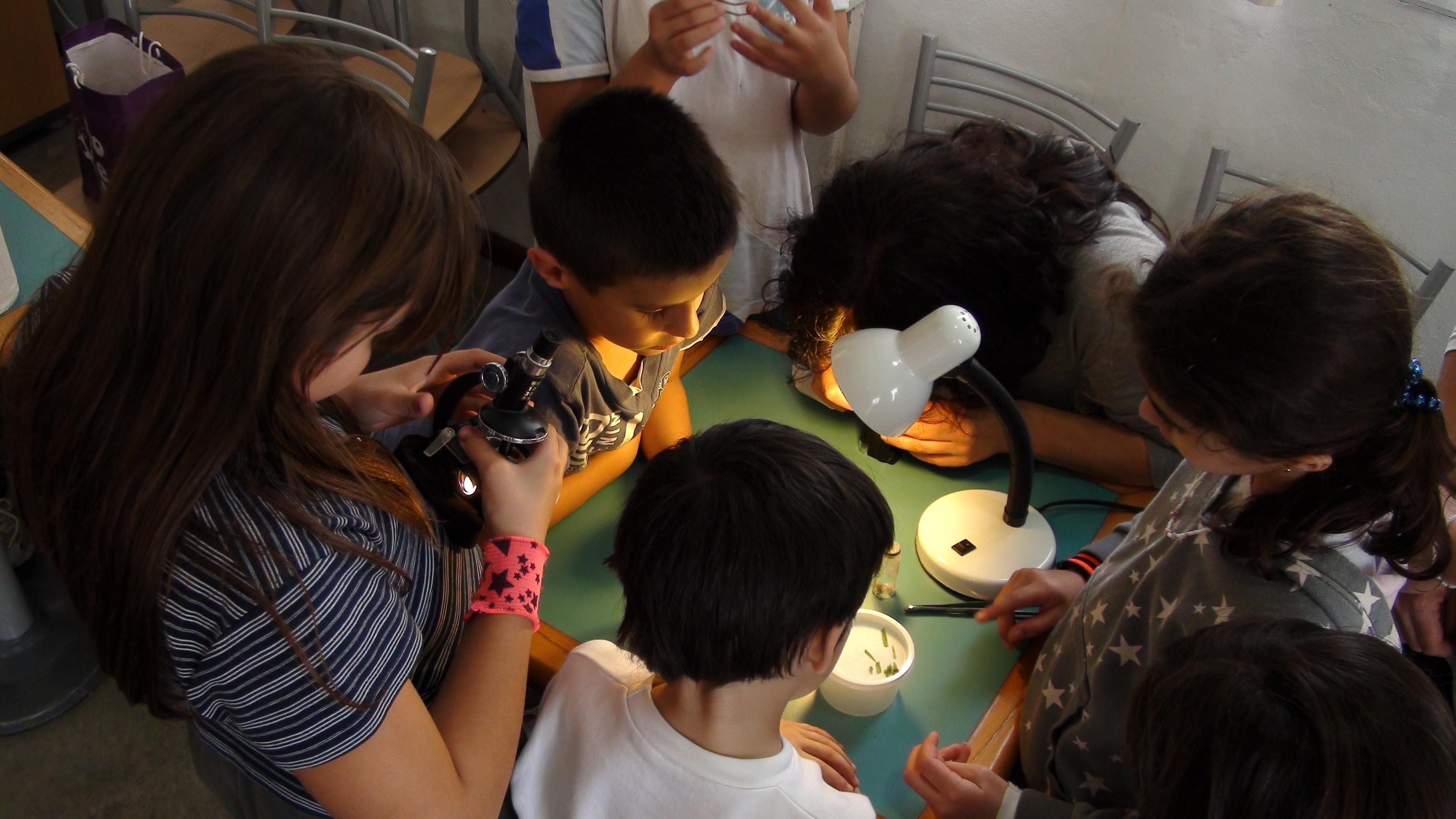 ChildrenScience.jpg