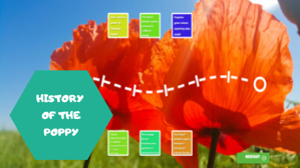 History of the Poppy