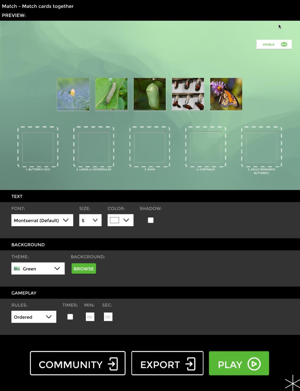 Match preview screen.jpg