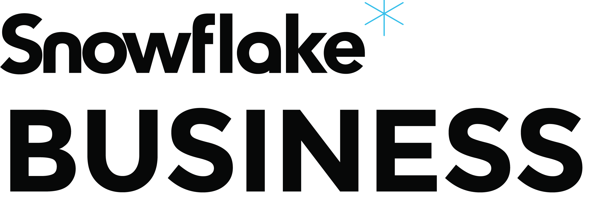 Snowflake Business logo.png