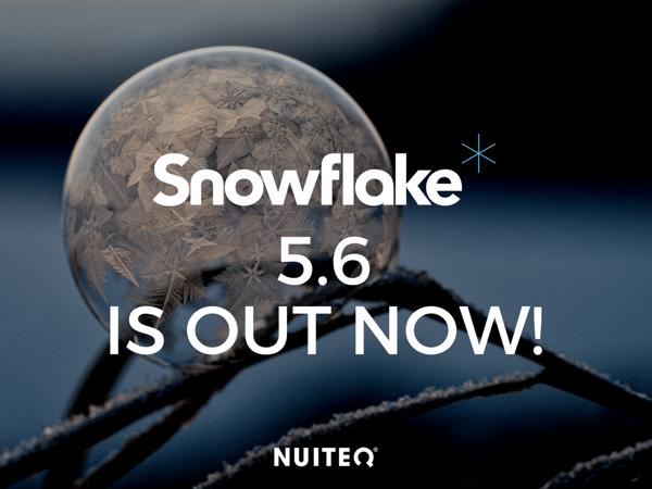 Snowflake 5.6.png