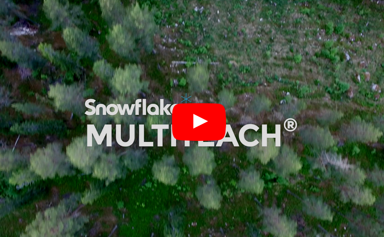 Snowflake MultiTeach by NUITEQ.png