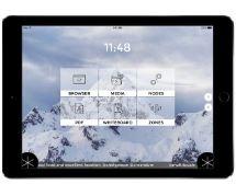 Snowflake on tablet.jpg