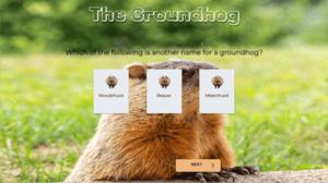 TheGroundhog