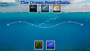 World_Oceans_Day_Activity_2