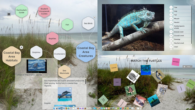 educational_content_in_Zones.jpg