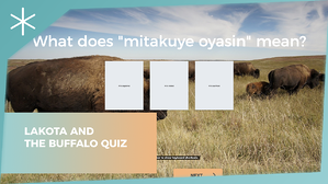 lakota-and-the-buffalo-quiz