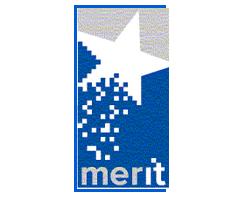 MerIT-2010